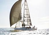 Sailboat on sunny ocean