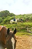 Woman leading girl on horseback above rural paddock