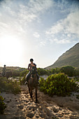 Young woman horseback riding on sunny beach