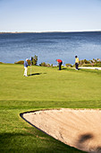 Male golfers on sunny lakeside putting green