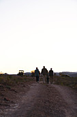 Safari tour group walking along dirt road