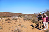 Safari tour group in sunny remote grassland South Africa