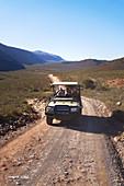 Safari vehicle driving along sunny remote road