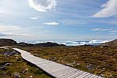 Footpath leading toward icebergs on remote coastline