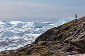 Man on rocks looking at polar icebergs Greenland