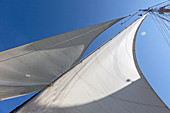 Sailboat sails blowing in breeze below blue sky
