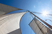 Sailboat sails blowing in wind below blue sky
