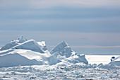 Sunny melting polar glacier Atlantic Ocean Greenland