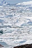 Glacial ice melting Greenland