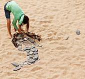 Girl making mermaid from rocks and seaweed on beach