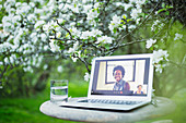 Colleagues video chatting on laptop screen in garden