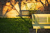 Shadow of bench on brick wall in sunny garden