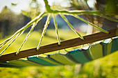 Close up hammock in sunny garden