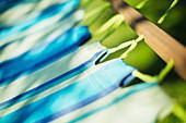 Close up sunshine over striped hammock