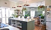 Domestic kitchen with kitchen island