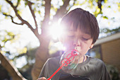 Boy blowing bubbles in backyard
