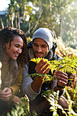Happy young hiking couple examining fern leaves
