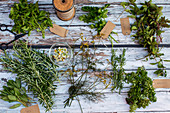 Mixed herbs from the garden