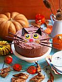 Schwarzer Katzenkuchen (Schokoladenkuchen) für eine Kinderparty zu Halloween