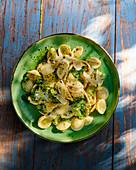 Orecchiette with broccoli and parmesan