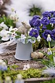 Kleine Osterdekoration mit Blüten von gefüllter Primel, Puschkinie, Blutpflaume und Traubenhyazinthe, Osterhase und Ostereier