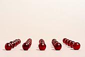 Reihen von einzelnen roten Trauben auf rosa Untergrund
