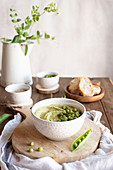 Bowl with hummus made with green pea, ingredients and bread slices