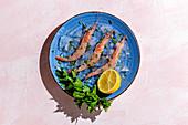 Garnelen auf blauem Teller mit halber Zitrone und Petersilie auf rosa Hintergrund
