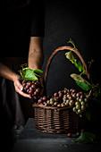 Fresh table grapes