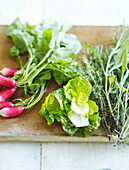 Lettuces, radishes and fresh herbs