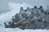 Dolos harbour wall with waves in winter