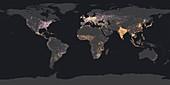 World population density, 2016