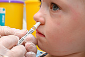 Nasal spray seasonal flu vaccine