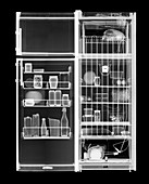 Fridge freezer and its contents, X-ray