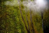 Waterfalls, Mount Waialeale, Kauai, Hawaii, USA