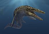 Mosasaurus marine reptile, illustration