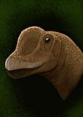 Europasaurus holgeri, Beaked Sauropod Dinosaur