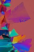 Eletriptan Crystals, LM