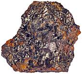 Algodonite