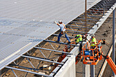 Building Construction Workers