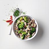 Scharfe Calamari-Broccoli-Sauce