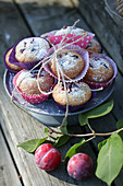 Muffins with plums and cardamom