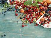 Sommerbeeren und -früchte