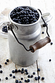 Forest blueberries in a retro bucket