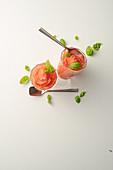 Tomaten-Sorbet