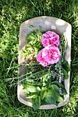 Fresh garden herbs and flowers in a wooden bowl in a meadow