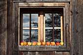 Apples lined up in front of a window of a wooden house