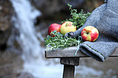 Apples and herbs on a wooden bench in front of a waterfall