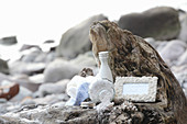Maritime souvenirs on piece of driftwood on beach