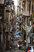 A view of Spaccanapoli street, Naples, Campania, Italy